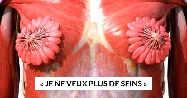Photo du torse d'une femme présentant le sytème musculaire et les glandes mammaires